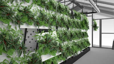 organiponic commercial hydroponic system