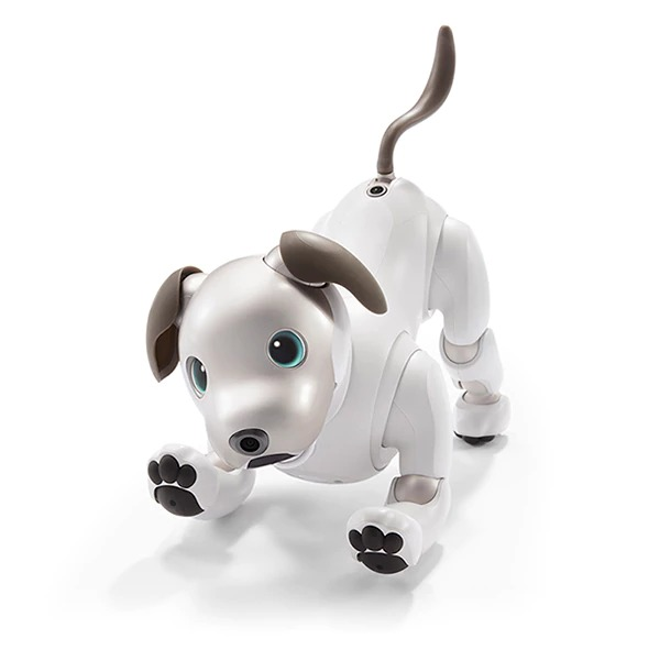 sony aibo robotic dog